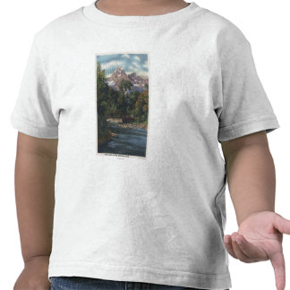 Teton National Park, WY - Twin Peaks View T-shirts