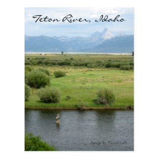 Teton River, Idaho Fisherman Postcard