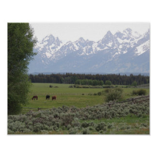 Teton Spring Day Posters