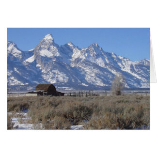 Teton Winter Christmas Card