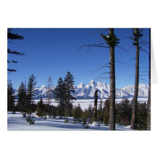 Tetons in February Card