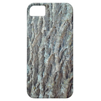 Texas Ash Tree iPhone 5 Cases