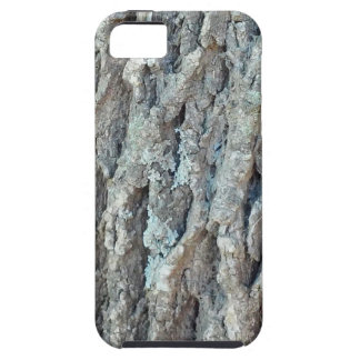 Texas Ash Tree iPhone 5 Covers