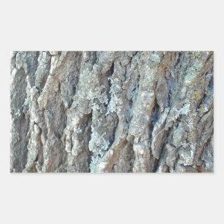 Texas Ash Tree Rectangular Sticker