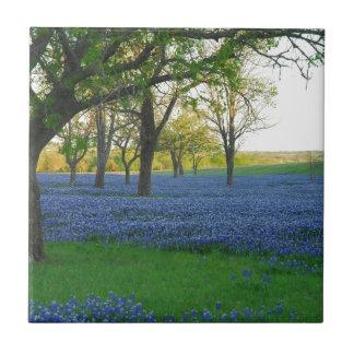 Texas Blue Bonnets Tile