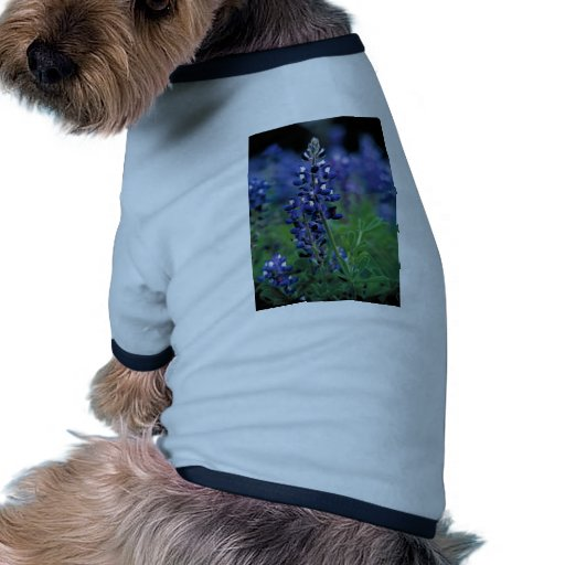 Texas Bluebonnet-2-Best Dog T Shirt