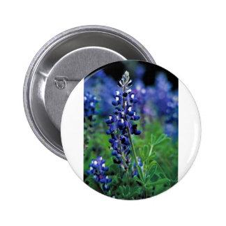 Texas Bluebonnet Pinback Buttons