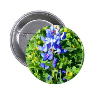 TEXAS BlueBonnet Pinback Button