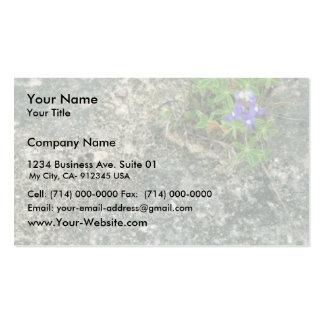 Texas Bluebonnet Business Card