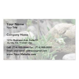 Texas Bluebonnet Business Card Template
