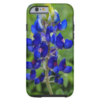 Texas Bluebonnet Flower iPhone 6/6s Case