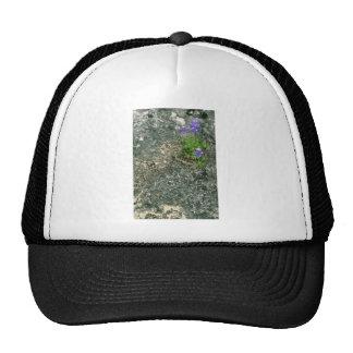 Texas Bluebonnet Trucker Hat