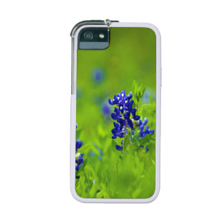 Texas Bluebonnet iPhone Case Cover For iPhone 5