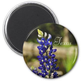 Texas Bluebonnet Magnet