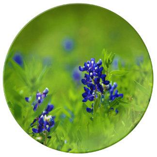 Texas Bluebonnet Porcelain Plate