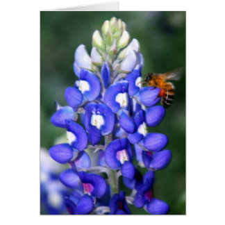 Texas Bluebonnet Thank You Stationery Note Card