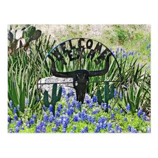 Texas Bluebonnet Welcome Postcard