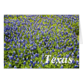 Texas Bluebonnets 2 Greeting Card