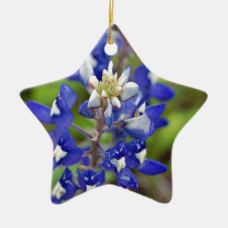 Texas Bluebonnets Christmas Ornaments