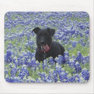 Texas Bluebonnets Field Cute Puppy Dog Photo Mouse Pad