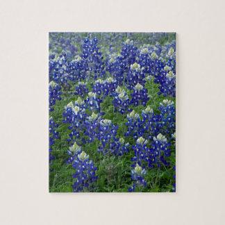 Texas Bluebonnets Field Photo Jigsaw Puzzles