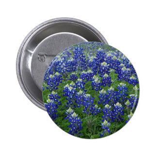 Texas Bluebonnets Field Photo Pins