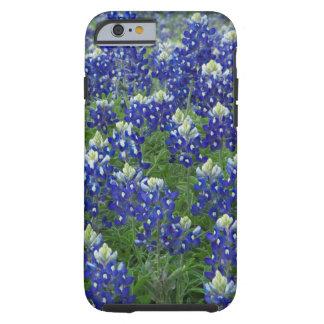 Texas Bluebonnets Field Photo Tough iPhone 6 Case