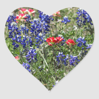 Texas Bluebonnets & Indian Paintbrush Wildflowers Heart Sticker