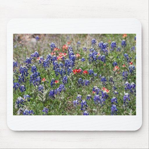Texas Bluebonnets & Indian Paintbrush Wildflowers Mousepads