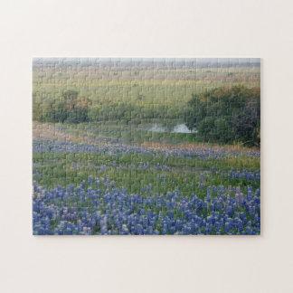 Texas Bluebonnets Jigsaw Puzzle