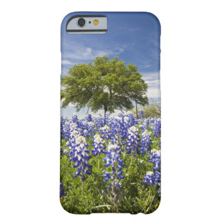 Texas bluebonnets(lupinus texensis) and oak barely there iPhone 6 case