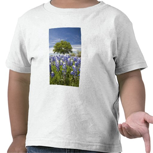 Texas bluebonnets(lupinus texensis) and oak t shirts