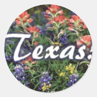 Texas Bluebonnets Paintbrushes Classic Round Sticker