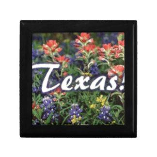 Texas Bluebonnets Paintbrushes Gift Box