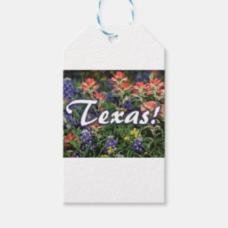 Texas Bluebonnets Paintbrushes Gift Tags