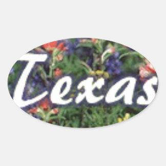 Texas Bluebonnets Paintbrushes Oval Sticker