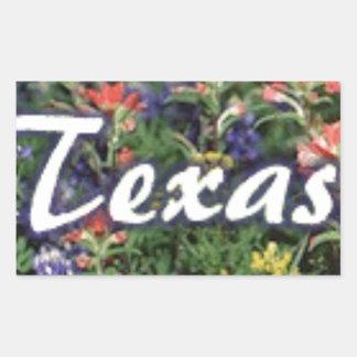 Texas Bluebonnets Paintbrushes Rectangular Sticker