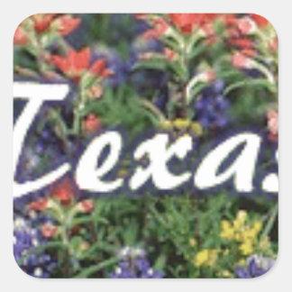 Texas Bluebonnets Paintbrushes Square Sticker