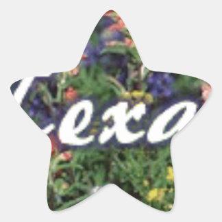 Texas Bluebonnets Paintbrushes Star Sticker