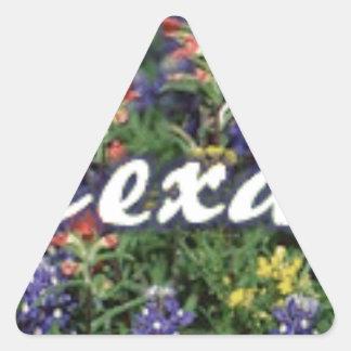 Texas Bluebonnets Paintbrushes Triangle Sticker
