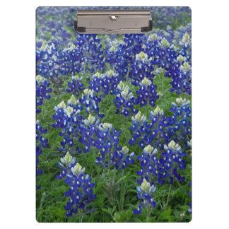 Texas Bluebonnets Photo Clipboard