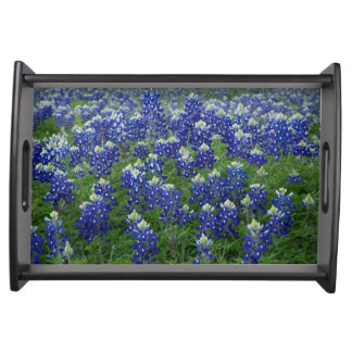 Texas Bluebonnets Serving Platters
