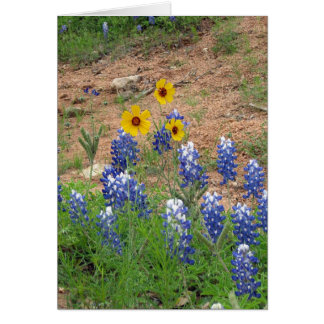 Texas Bluebonnets with Yellow Wildflowers Card