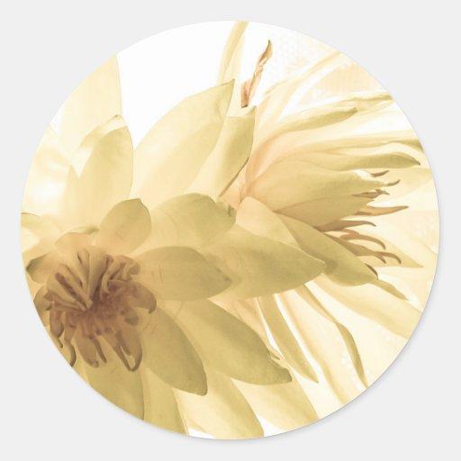 Texas Dawn Water Lilies in Sepia Round Sticker