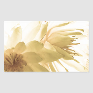 Texas Dawn Water Lilies in Sepia Rectangle Sticker