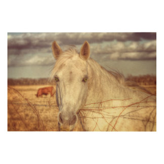 Texas Horse Wood Wall Decor