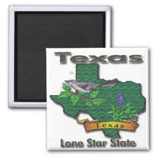 Texas Lone Star State Bird Flower Magnets