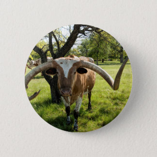 Texas Longhorn Bull 6 Cm Round Badge