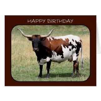 Texas Longhorn Cow Happy Birthday (Big Size) Greeting Card