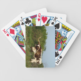 Texas Longhorn playing cards